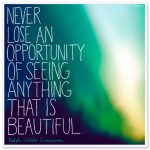 Beauty Quote…