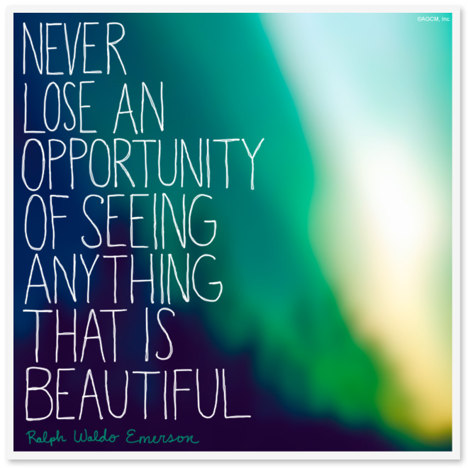 Never miss an opportunity of seeing anything that is beautiful. - Ralph Waldo Emerson