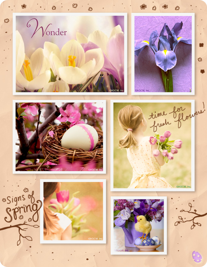 Moodboard - Easter Wonder