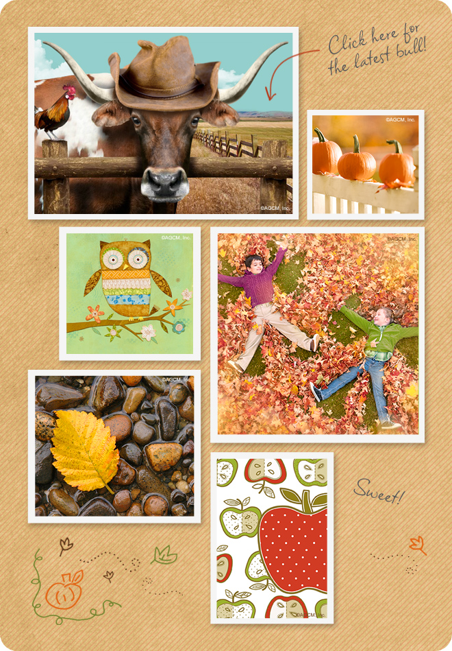 Fall cards and photos