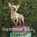 September Birthday Fun Facts