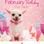 February Birthday Fun Facts