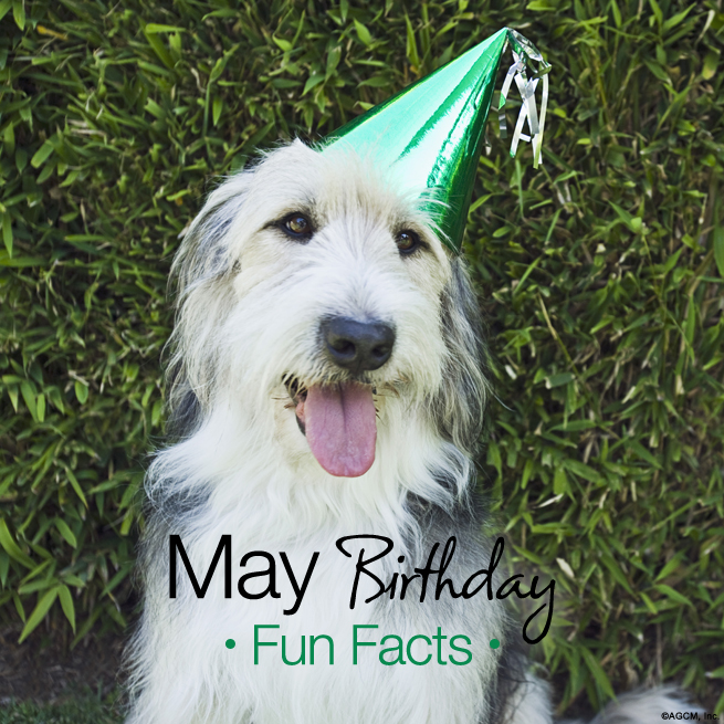 May Birthday Fun Facts