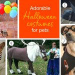 Adorable Pet Halloween Costumes