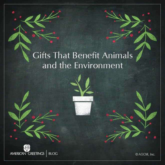 AG_Christmas-Gift-Guide_Animals-and-Environment_660x660