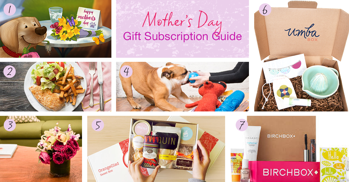 Mother's Day Gift Subscription Guide