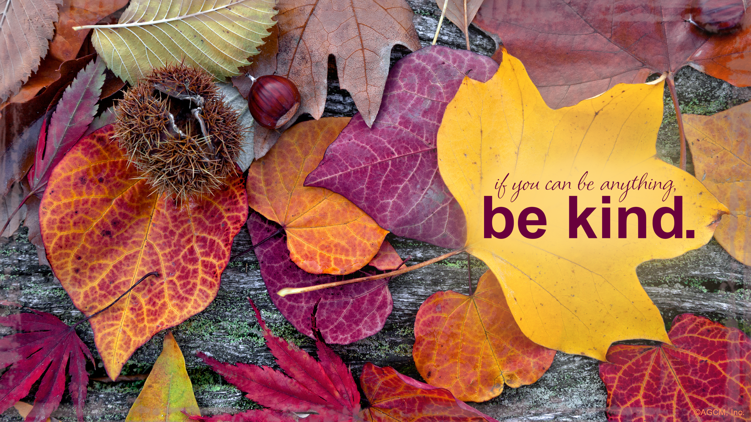 Hello,October! (Free Digital Download) - American Greetings Blog