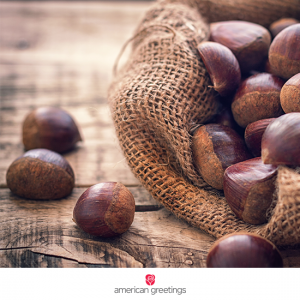 AG_FB_Chestnuts_step_01