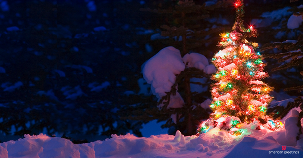 Pine tree with Christmas lights in the snow