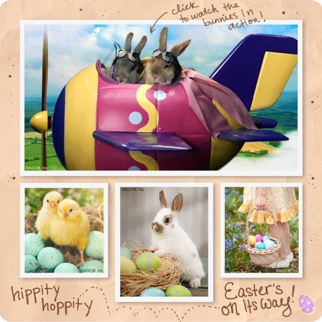 Bunny Banter - scenes from the Easter ecard with a bunny in an airplane