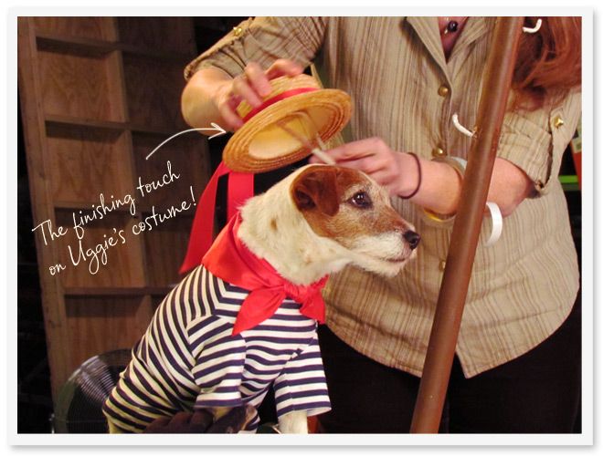 The finishing touch on Uggie's costume - putting the straw hat on the dog