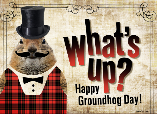 What's Up? Happy Groundhog Day