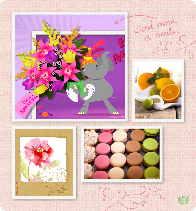 send mom a smile! dancing elephant with flowers, macaroons, and cut up oranges.