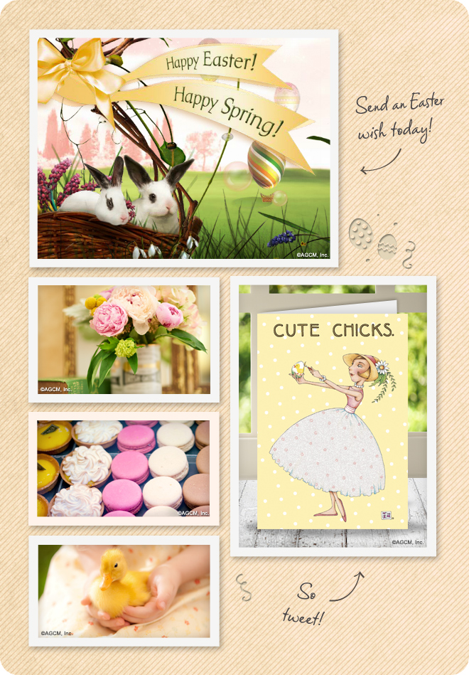 Send Easter cards and connect with friends and family.